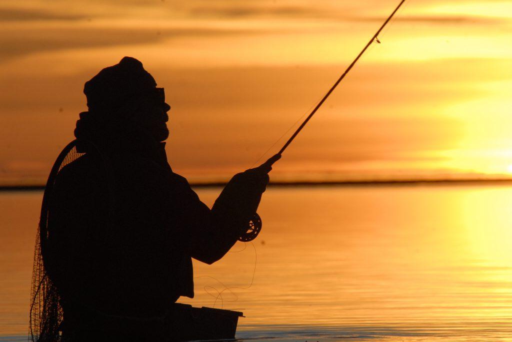 havørred fyn havørredfiskeri turplanlægning sommerfiskeri ksyt nattefiskeri