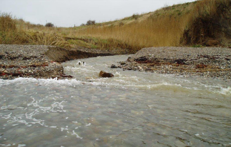 Havørredvandløb å udmunding havørred fyn ærø restaurering opgang af havcørreder